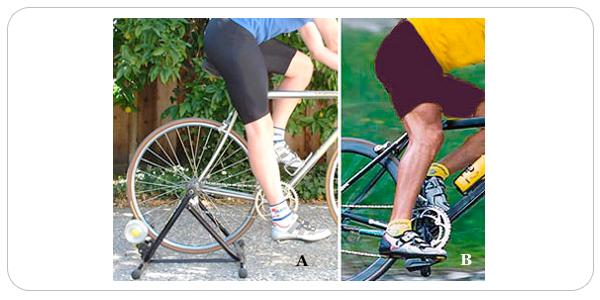 activite-physique-bicyclette01